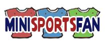 Mini Sports Fan
